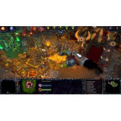 Žaidimas Dungeons II PS4 2K - 3